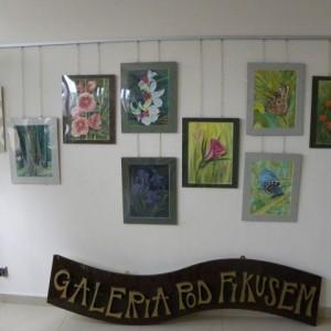 Maria Maślankowska Wystawa 1
