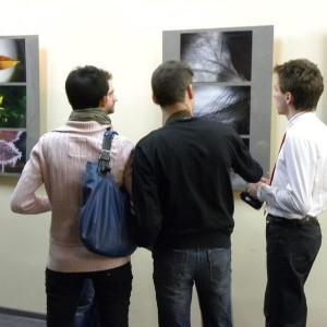 Wystawa Fotografii Ewy Walickiej – 3