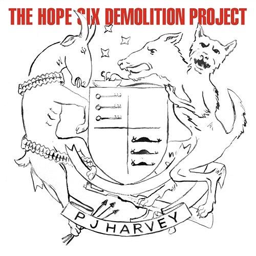 PJ Harvey – Hope Six Demolition Project