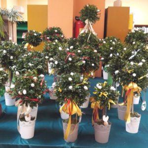 Wielkanocne Palmy 6