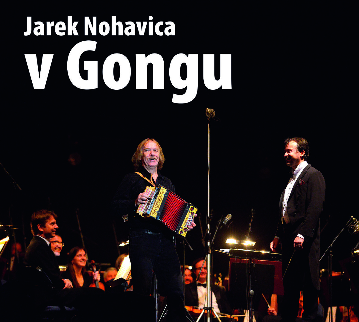 NOHAVICA JAROMIR – V Gongu