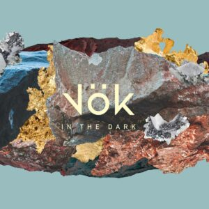VOK – In The Dark