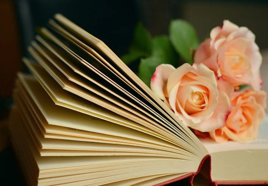 Książka I Kwiaty